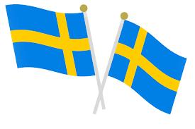 Oversaettelse Til Svensk Af Svensk Oversaetter Fra Dkk 205 I Timen
